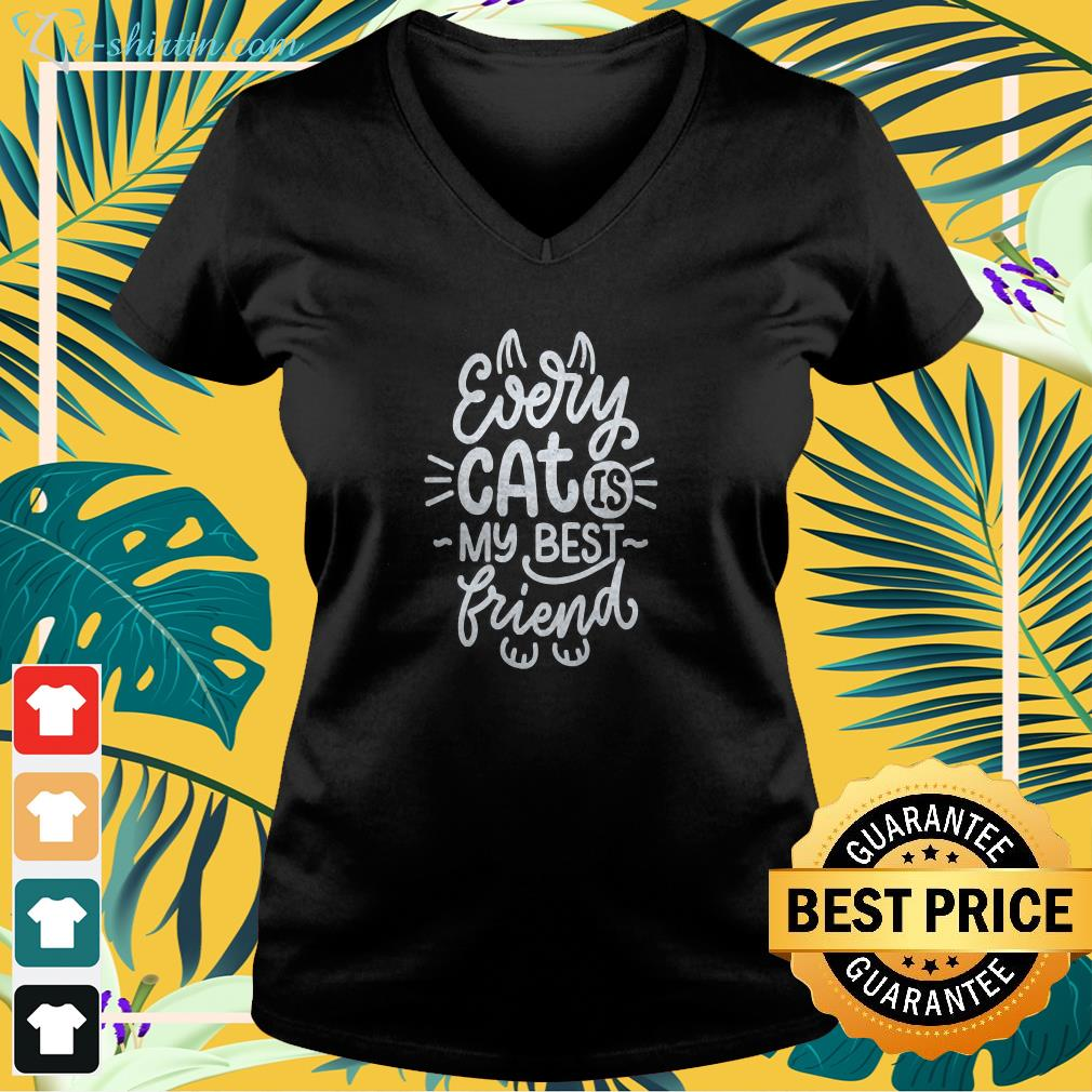 Every cat is my best friend v-neck t-shirt