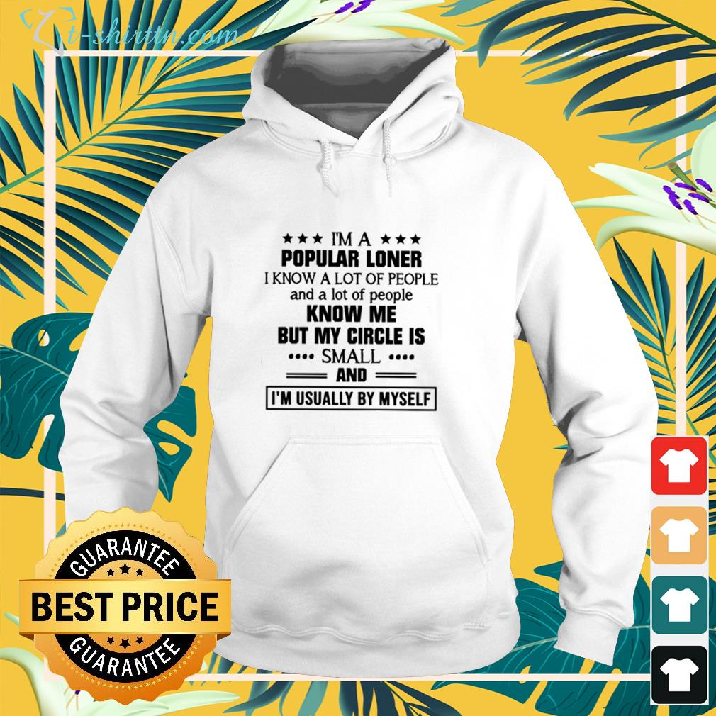 I'm a popular loner I know a lot of people know me but my circle is small hoodie
