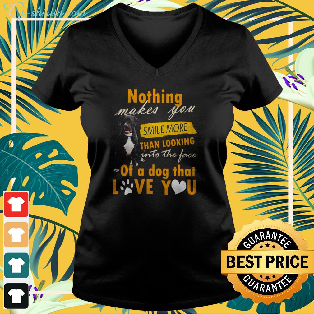 Pitbull Nothing makes you smile more than looking into the face v-neck t-shirt