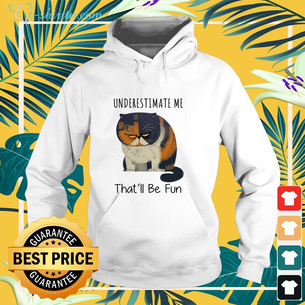 Pudge the cat underestimate me that'll be fun hoodie