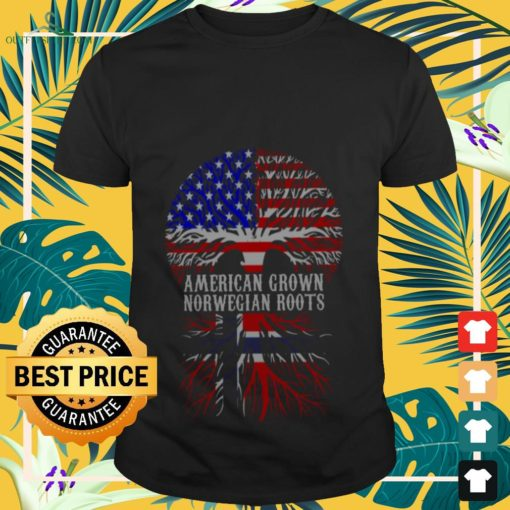 american grown with norwegian roots T shirt