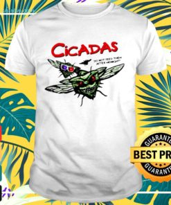 Cicada do not feed them after midnight t-shirt
