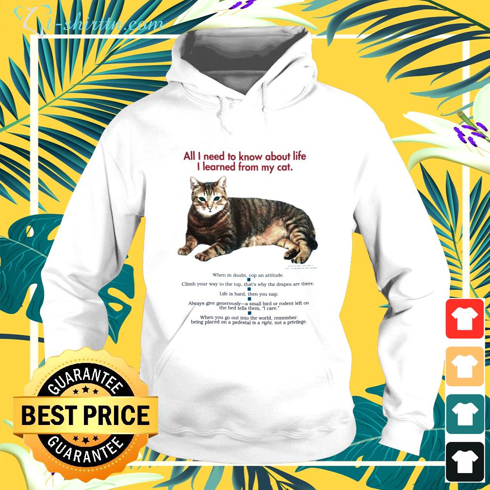 All I need to know about life I learned from my cat hoodie