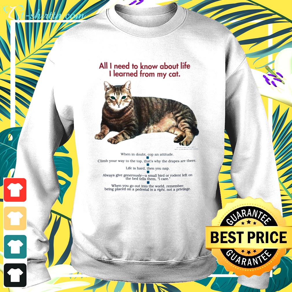 All I need to know about life I learned from my cat sweater