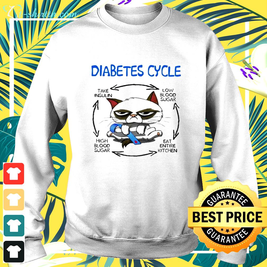 Cat diabetes cycle funny sweater