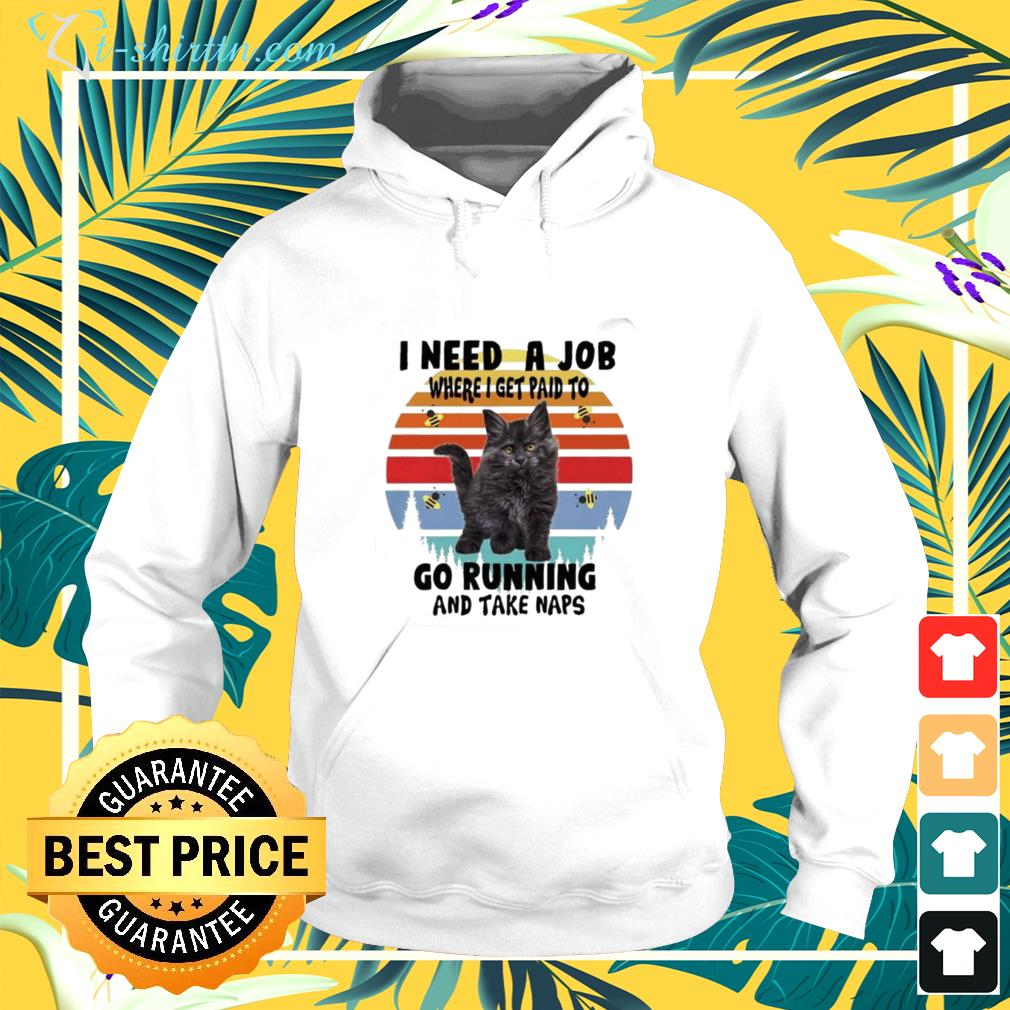 Cats I need a job where I get paid to go running and take naps vintage hoodie