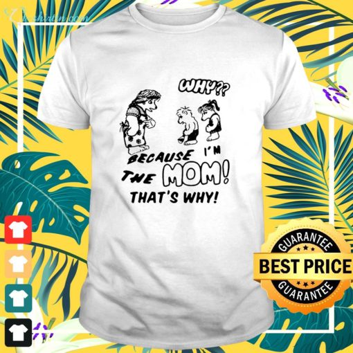 Harry Styles why because I'm the mom that's why shirt